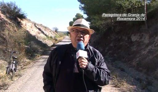 Peregrinación por Bullas 2014